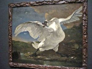 "Asselijyn's ""The Threatened Swan"""